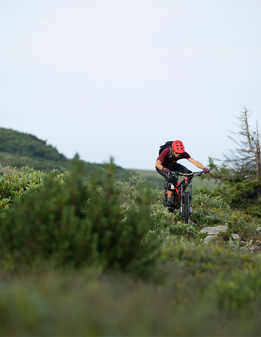 MET Terranova Mips Trail and E-MTB Helmet Paganella Bike Resort