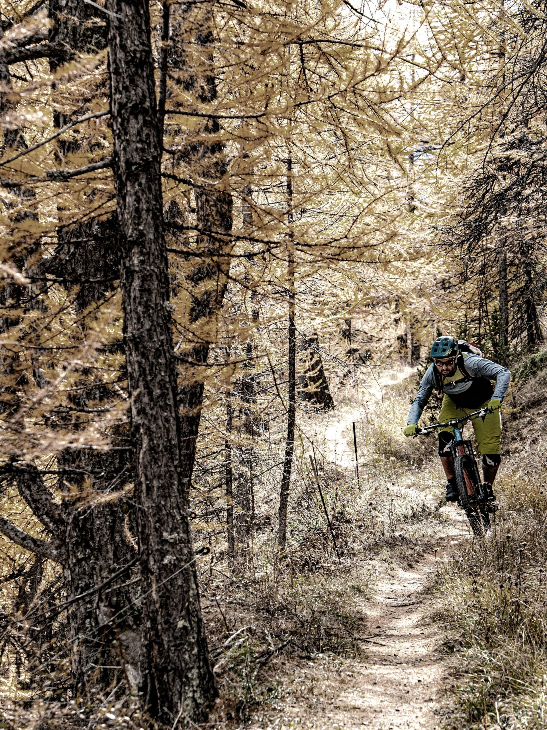 MET Terranova Mips Trail and E-MTB Helmet